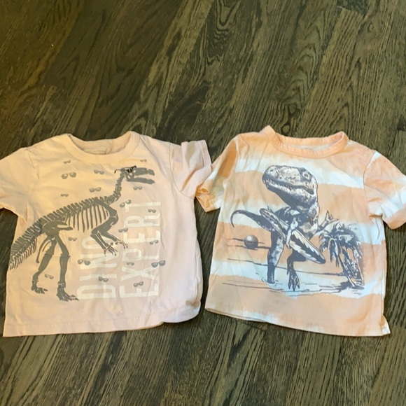 The children place Dino tees